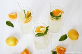 Orange-Lemonade-Punch-Recipe-by-A-Blissful-Nest-005